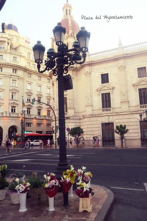 A Girl's Guide to Valencia