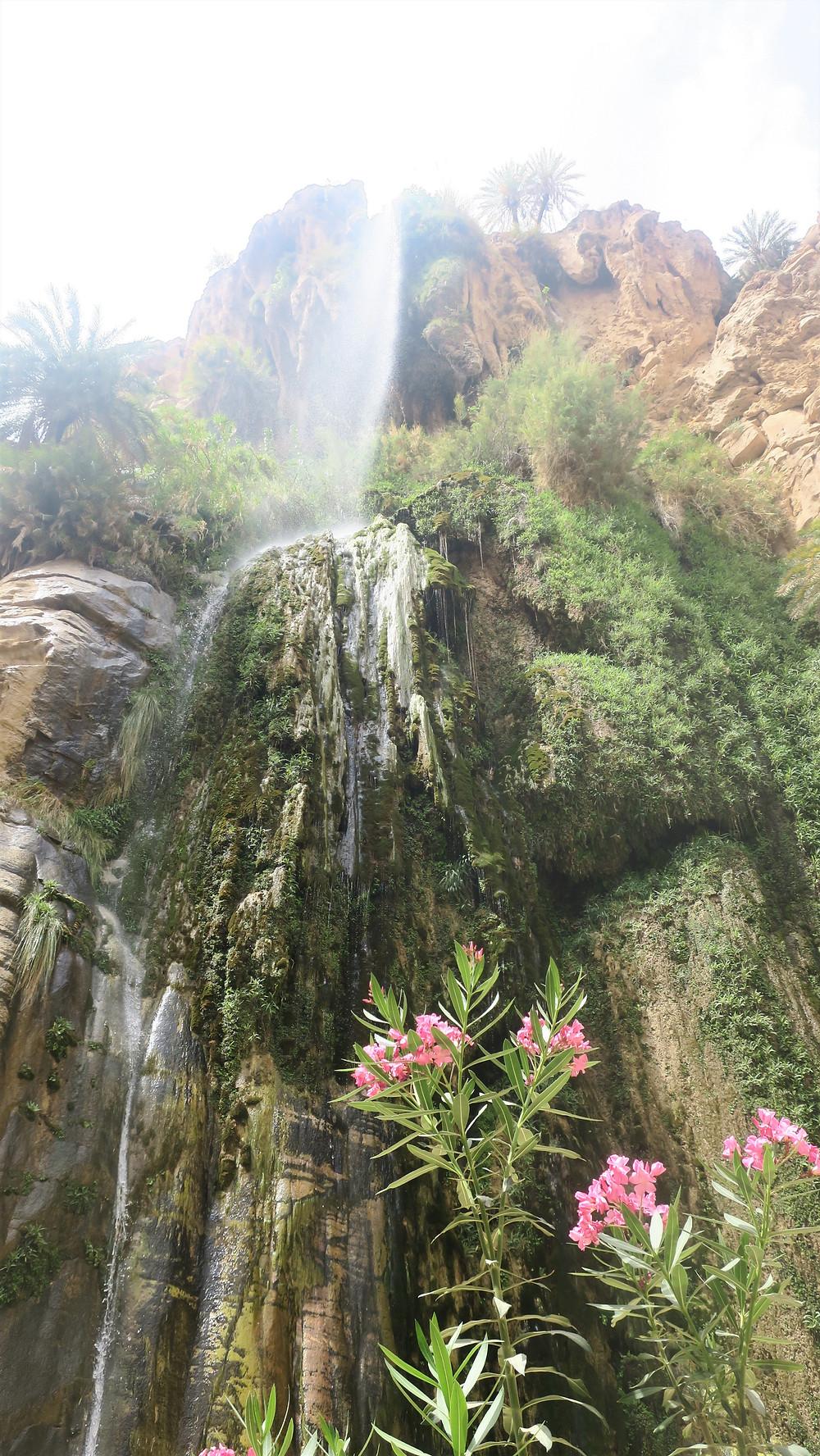 Dana wadi waterfall