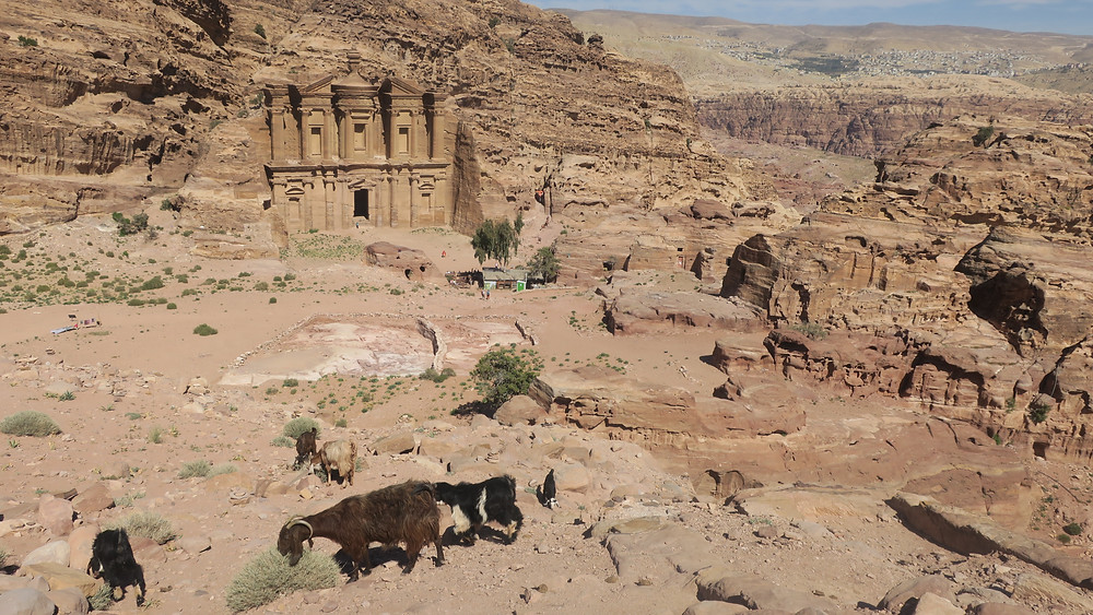 Petra view of monastery with goats scrambling