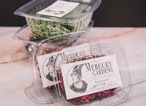 """Veggie Lovers"" Fresh Cut Micro Green Bundle by Mercury Gardens"