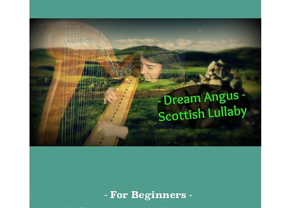 Dream Angus