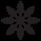 intrikata Snowflake