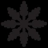 Komplizierte Snowflake