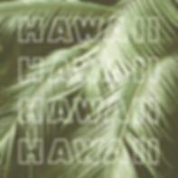 Glassons_X_Hawaii_–_3000x2000_–_7.jpg