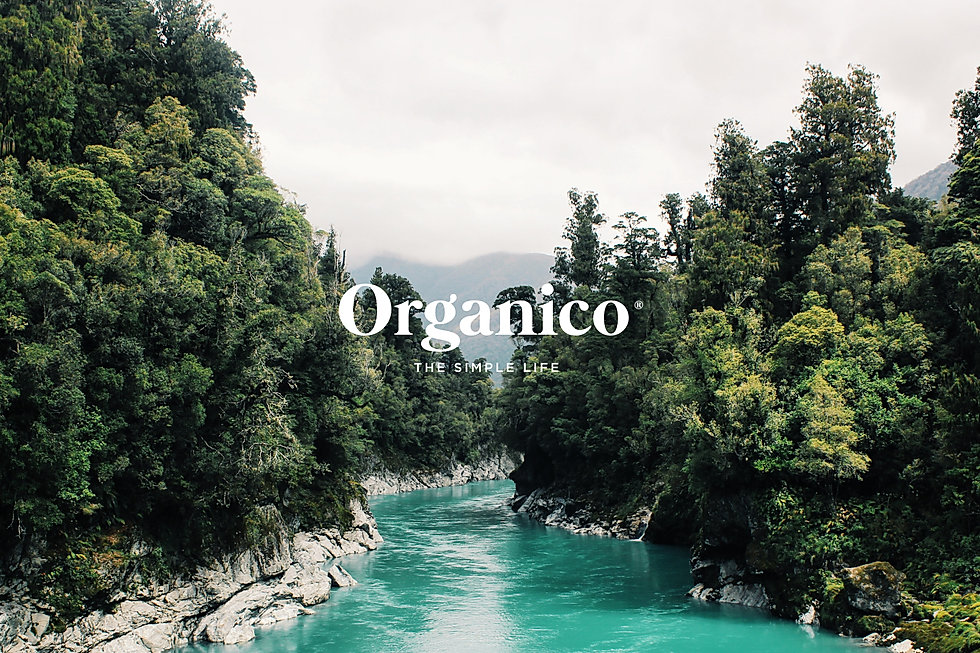 ORGANICO_1.jpg