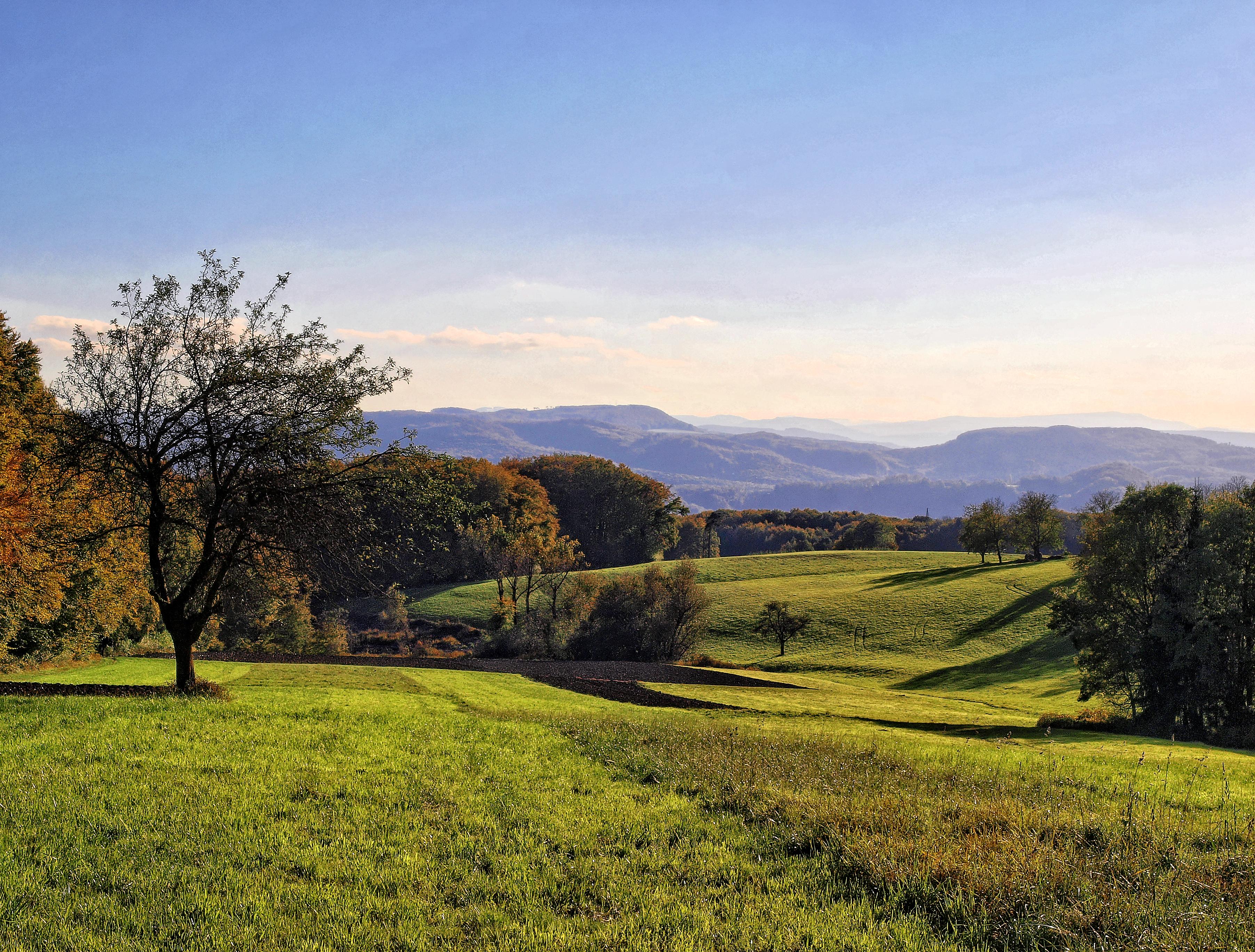 fields on the Rührberg, Wyhlen