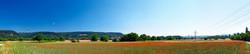 grain field with poppy, Wyhlen