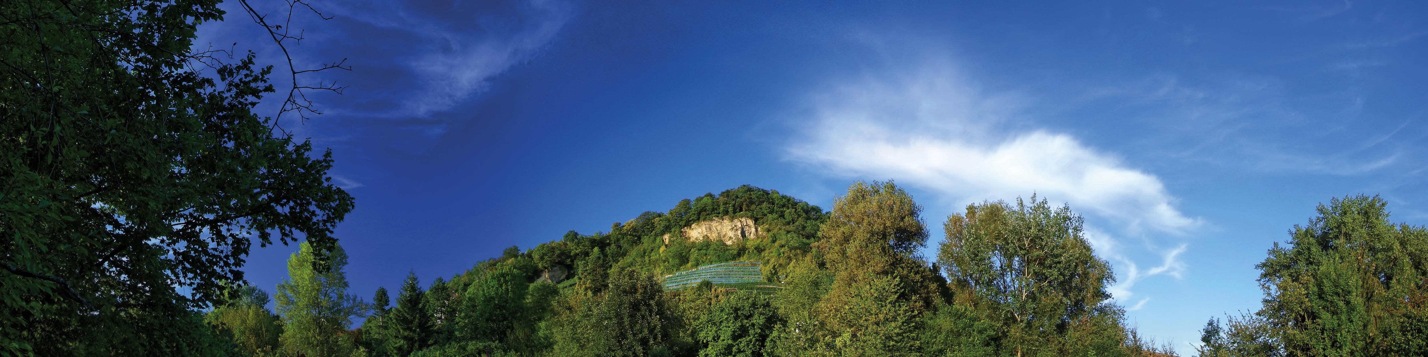 Grenzacher Hornfelsen - a landmark