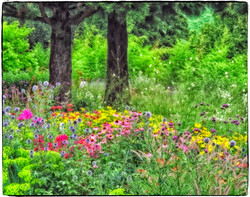 homage to Claude Monet