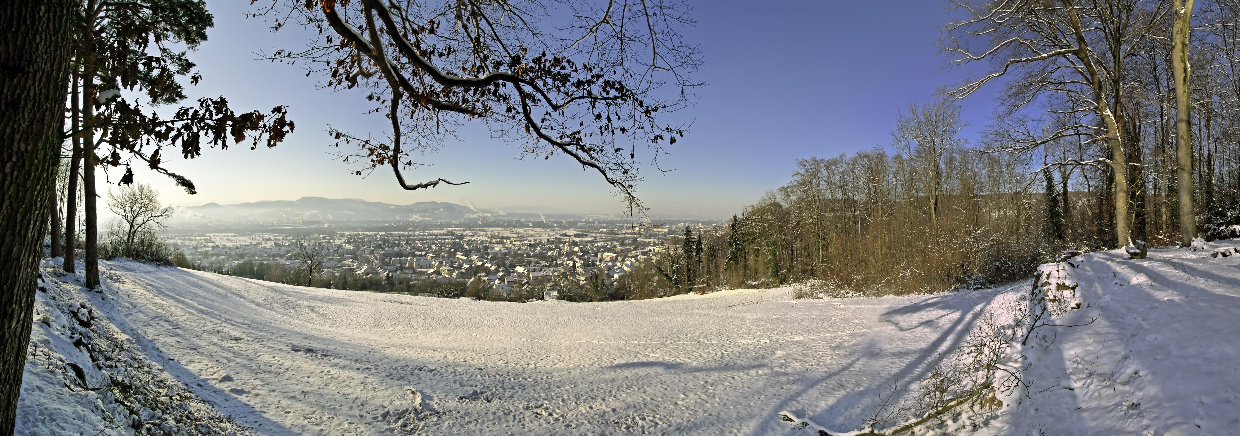 Grenzach-Wyhlen seen from Mühlerain