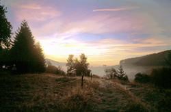 morning has broken, near Bernau