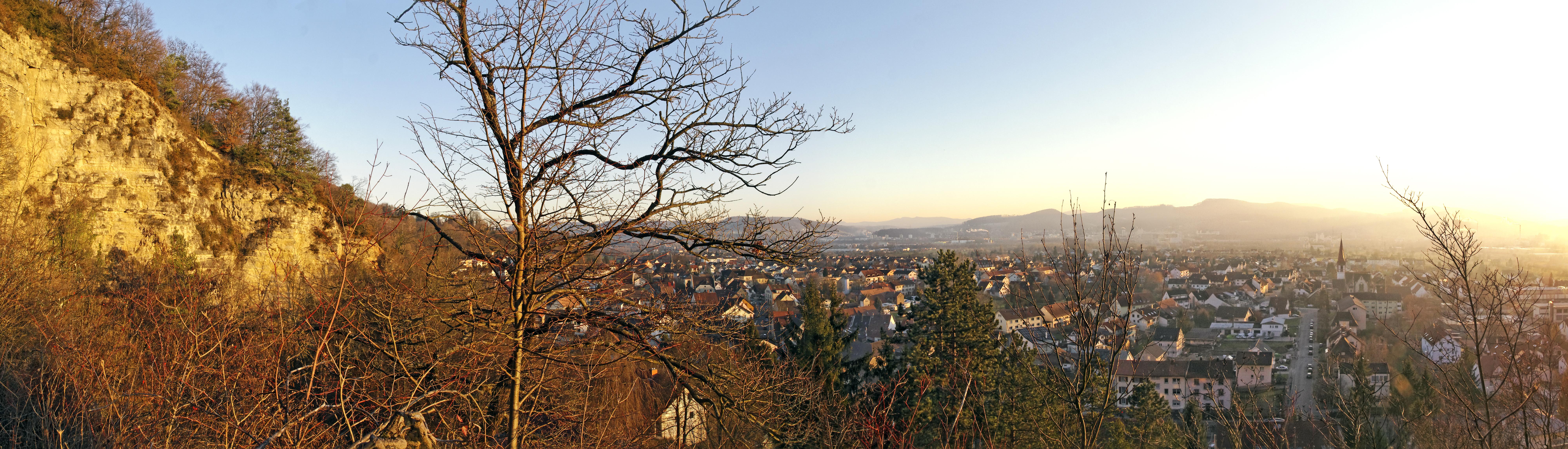 Wyhlen seen from Neuweg