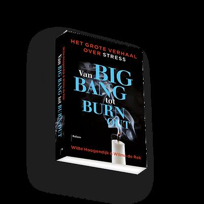 Omslag-Van-big-bang-tot-burn-out-3D-600x