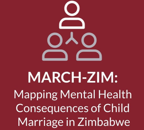 March-zim logo .jpg