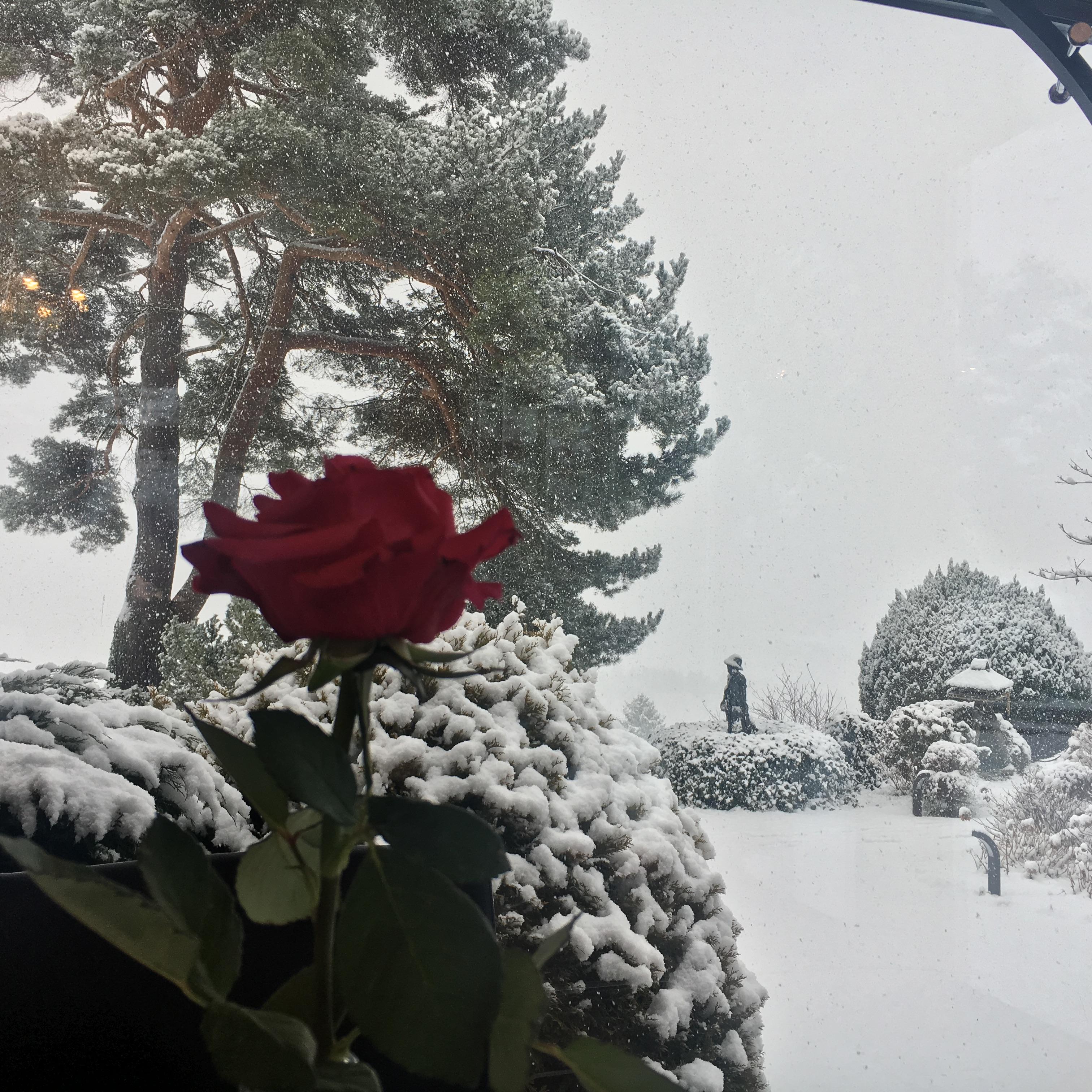 Reiteralm Ansitz Winterlandschaft