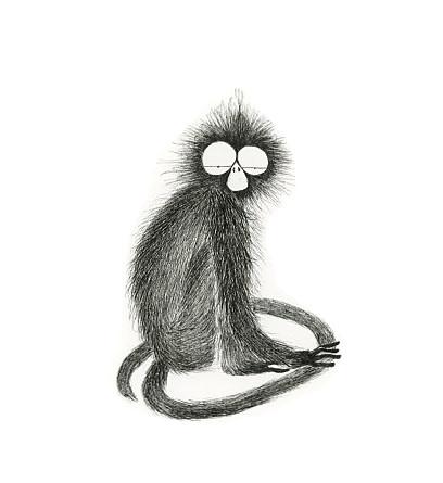 Natuna Island leaf monkey