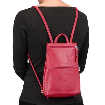 Red Backpack on back