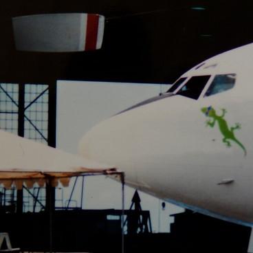 Merc as Gecko.jpg