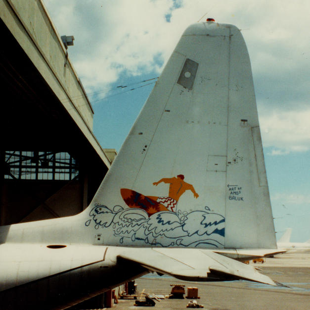 173 at VQ-3 before retirement-Art by AMS