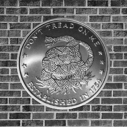 1 Ounce Silver Don't Tread On Me Coin