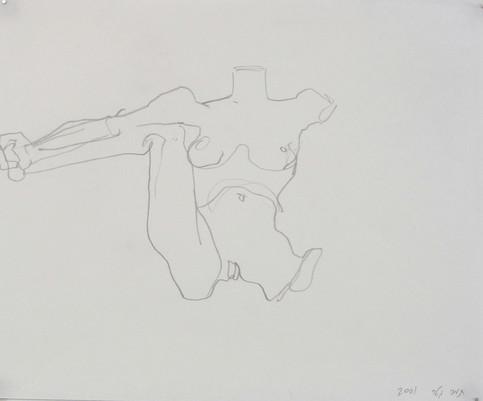 0012_Tamar_Getter_IRIS_2001_pencil.jpg