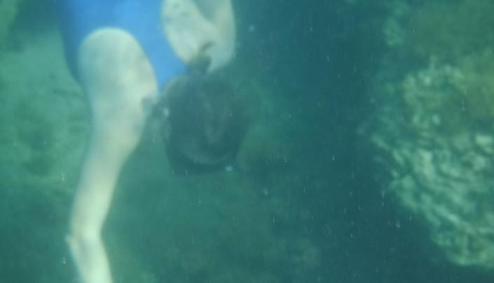 Katka searching for interesting algae