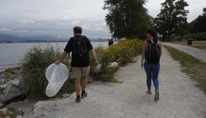 Ivan collecting insects in Vancouver at ISOP/PSA Joint Meeting 2018