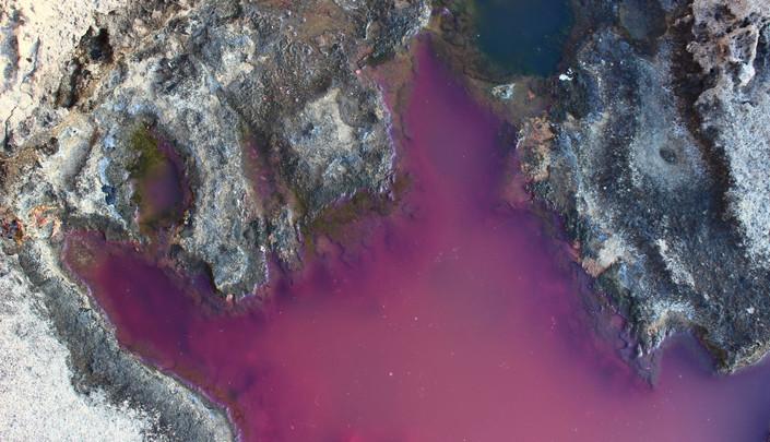 Pink salt pond in Cyprus before ISOP2018
