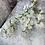 Thumbnail: Silk Tall Spray White and Green