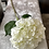 Thumbnail: Silk Extra Large Mop head Hydrangea Ivory