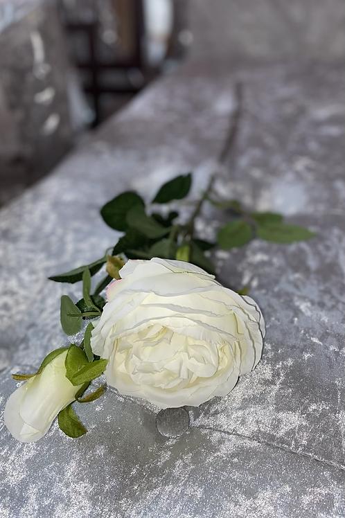 Silk Single Head English Rose Cream Stem with bud