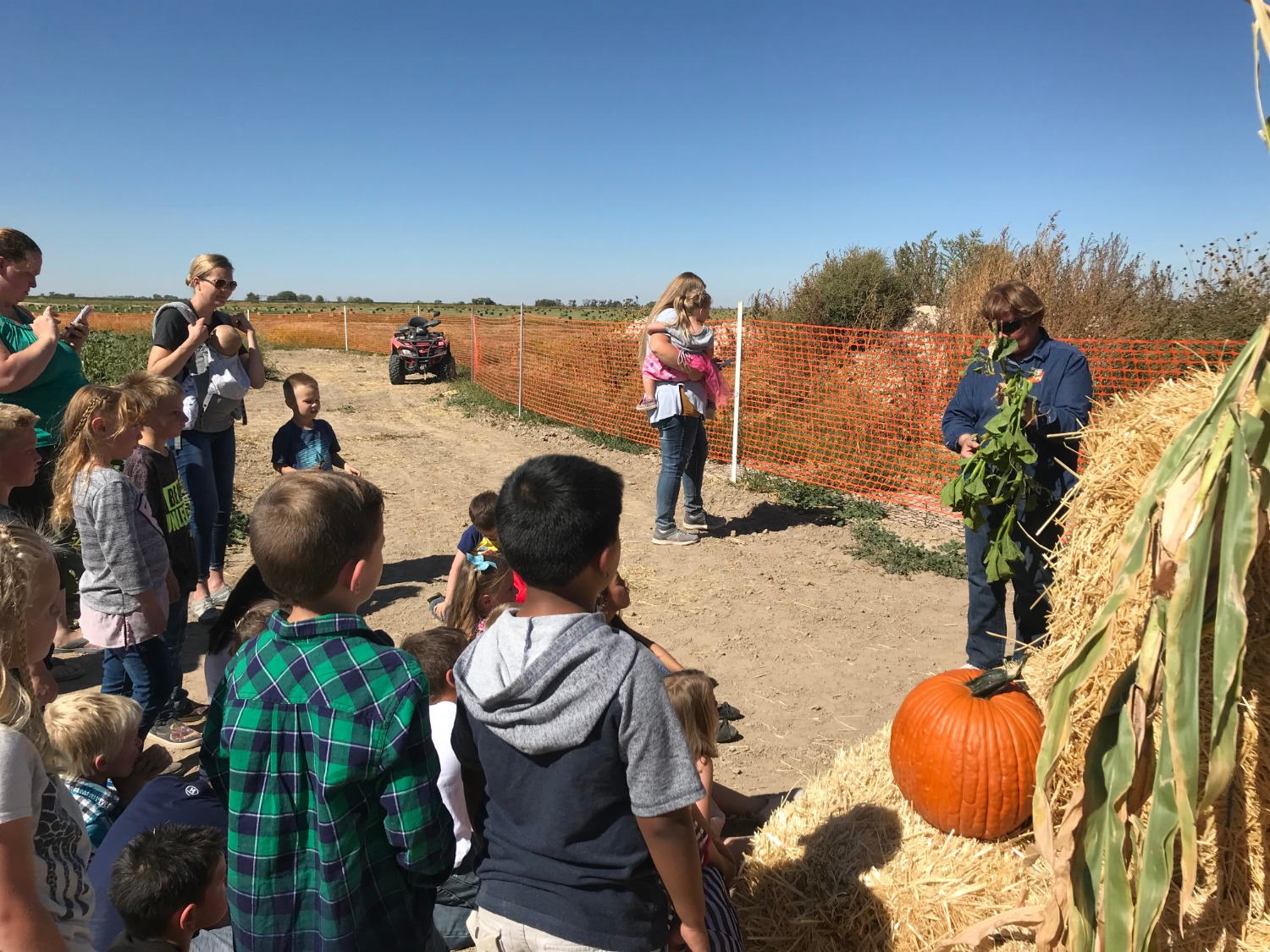 PES Students learn about pumpkin growth.