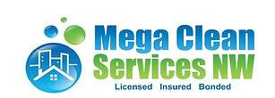 Mega Clean Logo.jpg