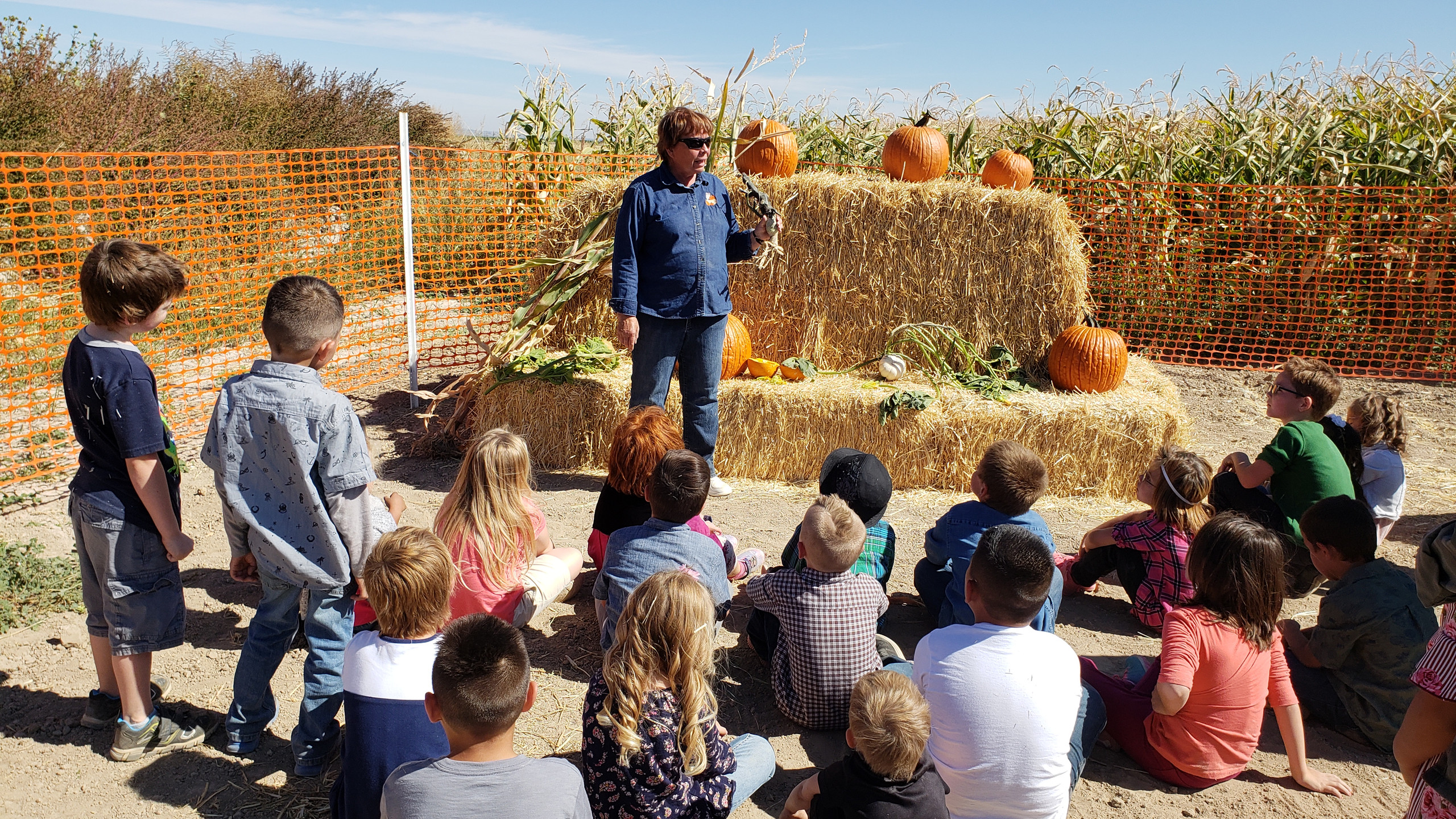 PES Students go to the Buhl pumpkin patch and learn about pumpkins.