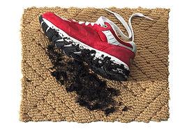 Carpet with Dirty Sneaker.jpg