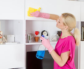 Woman cleaning house..jpg