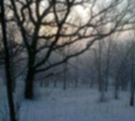 Winter.Scene.Retzer.jpg