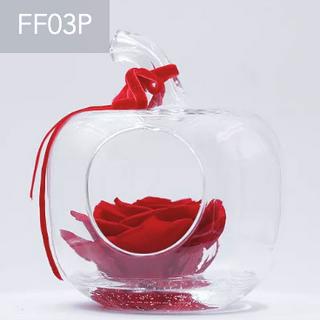 FF03P