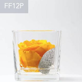FF12P