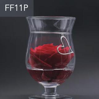 FF11P