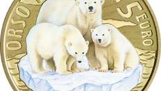Serie: Nachhaltige Welt / bedrohte Tiere – Eisbär