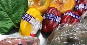 新鮮野菜入荷しました!