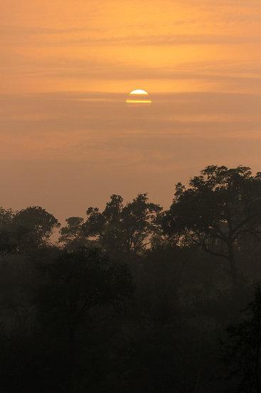 Ricci Bozas | Welcoming a New Dawn