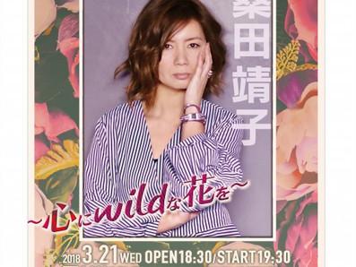 桑田靖子デビュー35周年記念ライブ 〜心に Wild な花を〜 at CLAPS