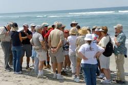 Oceanside Beach - 6-27-08 001