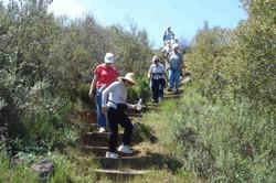 Hike 006
