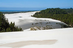 Dune-ride-6618