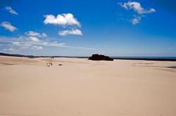 Dune-ride-6601