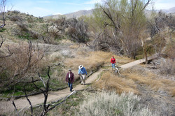 Yucca Valley 2009_0223