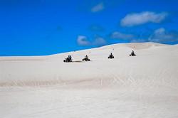 Dune-ride-6606